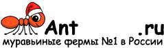 Муравьиные фермы AntFarms.ru - Красноярск